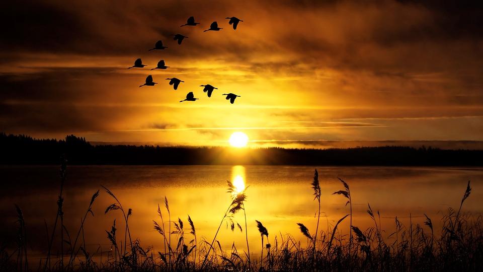 sunset-1960251_960_720